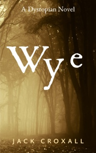 Wye Cover Small