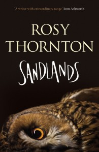 thumbnail_Sandlands%20cover%20high%20res